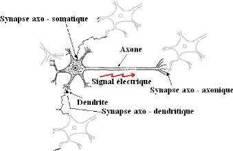 etude-du-calage-de-la-validation-et-des-performances-des-reseaux-de-neurones-formels-partir-des17